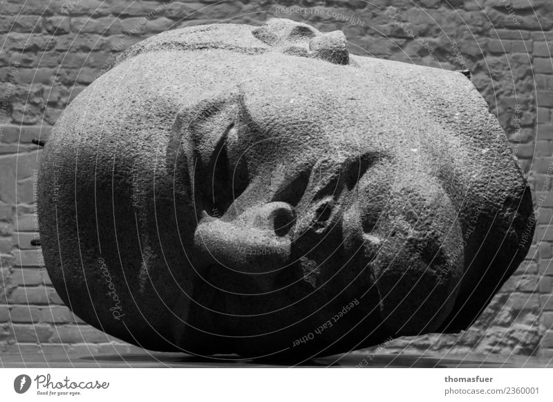 Lenin Kopf seitlich Kunst Kunstwerk Skulptur Haare & Frisuren Glatze Bart Stein Bekanntheit dunkel gigantisch groß historisch Originalität Ende Enttäuschung