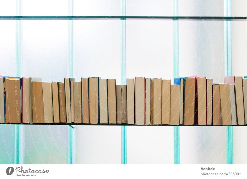 Sommerbücher 2 Fenster Buch ästhetisch Bildung türkis Buchseite Regal Möbel Medien Bücherregal