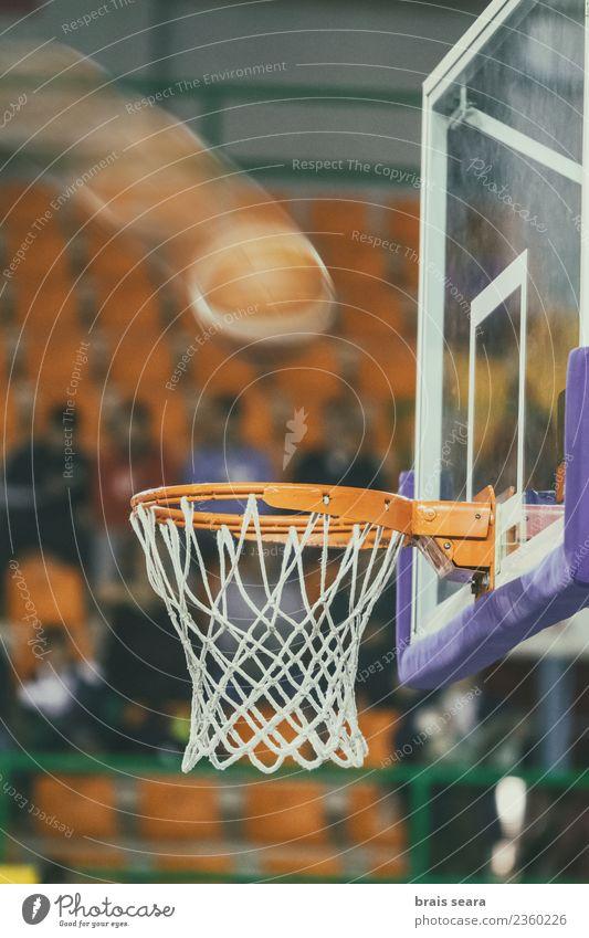 Basketball Sport Ballsport Sportveranstaltung Stadion Luftballon Bewegung Spielen sportlich Genauigkeit Fotografie Korb Quadrat im Inneren Streichholz