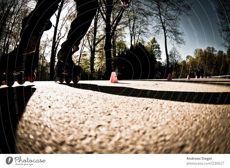 Skater Freizeit & Hobby Inline Skating Sport Sportler Schönes Wetter laufen Freude Bewegung Slalom Kegel Asphalt Farbfoto Außenaufnahme Detailaufnahme Licht