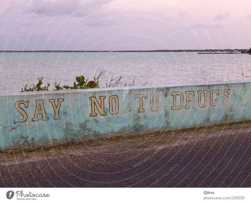 SAY NO TO DRUGS Meer Wand Graffiti Mauer Hinweisschild Rauchen Schutz Krankheit Rauschmittel Alkohol Verbote Straßenrand Warnschild Straßenkunst Karibik
