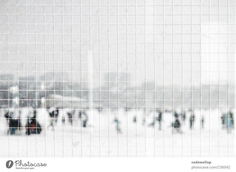 safety first weiß Winter Landschaft kalt Schnee grau Eis Wetter Spaziergang Fußgänger Raster Alster Glas Sicherheitsglas