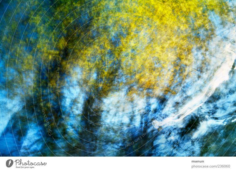 wuthering heights Natur Himmel Frühling Sommer außergewöhnlich fantastisch trendy modern schön blau gelb bizarr chaotisch Design Farbe Kreativität Kunst