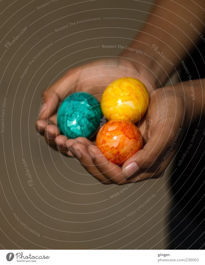 Bitte sehr! Lebensmittel Mensch Kindheit Hand Finger 1 festhalten Feiertag Ostern Tradition Ei anbieten schenken Geschenk dreifarbig dunkelhäutig Präsentation