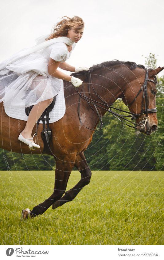 Geschwindigkeit Mensch feminin Junge Frau Jugendliche Erwachsene Tier Pferd Bewegung Freude Lebensfreude Kraft Brautkleid Reiten blond galoppieren edel Dynamik