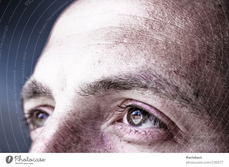 sehnsucht. Mensch Mann Einsamkeit ruhig Erwachsene Auge Gefühle Kopf braun maskulin authentisch nachdenklich Vertrauen Sehnsucht Wachsamkeit Verantwortung
