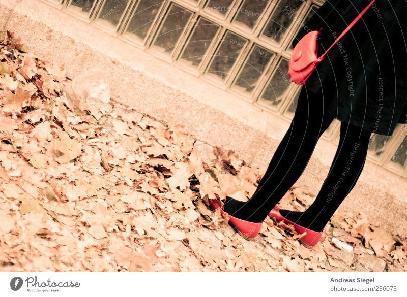 Last Exit Mensch feminin Frau Erwachsene Beine 1 Herbst Blatt Mantel Strumpfhose Accessoire Handtasche Schuhe stehen retro rot schwarz Glasbaustein Farbfoto
