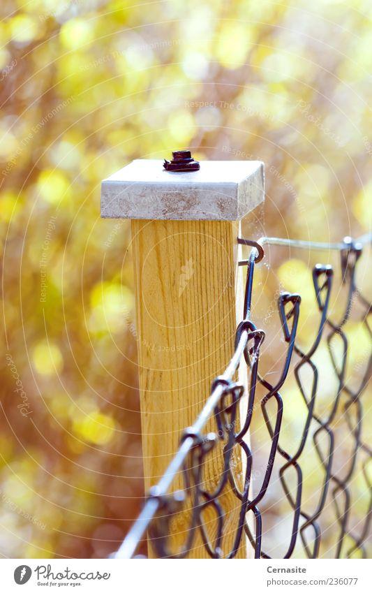 weiß gelb Gefühle Holz Stimmung braun Metall ästhetisch einfach Neugier Bauwerk Zaun