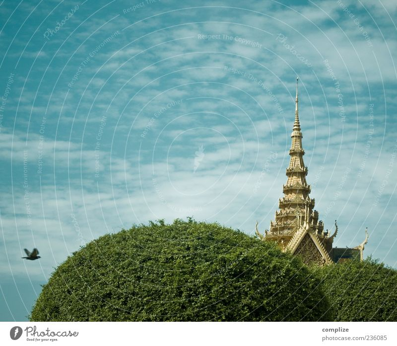 OAo Himmel blau Baum Ferien & Urlaub & Reisen Wolken Architektur Religion & Glaube Luft Vogel gold Dach Wahrzeichen Hauptstadt Sehenswürdigkeit Sightseeing