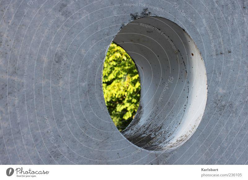 grünes. loch. Wand Architektur Mauer Gebäude Fassade Beton außergewöhnlich rund Bauwerk Loch Perspektive Strukturen & Formen Sommerloch