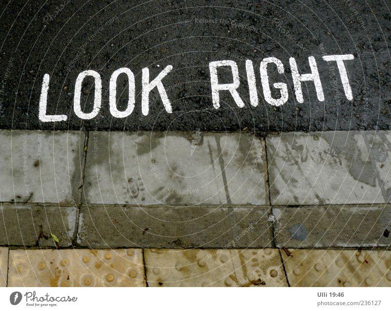Tipp für den Verfassungsschutz. weiß Straße Herbst Stein Regen Erde Schilder & Markierungen Schriftzeichen gefährlich Beton nass Hinweisschild Zeichen Risiko