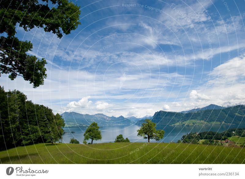 Überblick Natur Landschaft Himmel Wolken Schönes Wetter Baum Alpen Berge u. Gebirge Gipfel Schneebedeckte Gipfel Seeufer natürlich blau grün Wasser Wiese