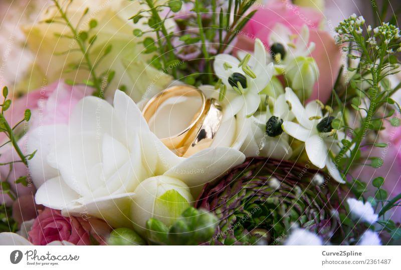 Für immer und ewig Zeichen Gefühle Ehe Ehering Gold Blume Verbundenheit Treue Ewigkeit Zusammensein Zusammenhalt Ring Blumenstrauß Hochzeit