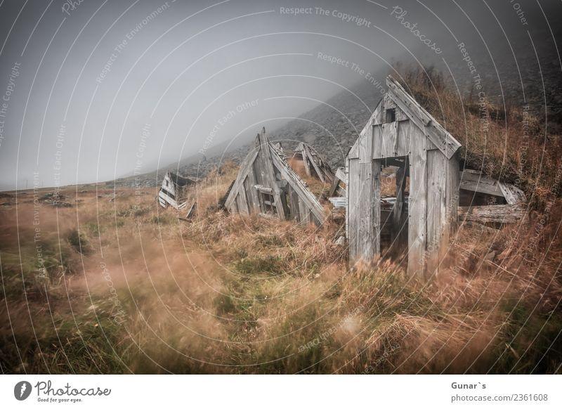 Vergänglichkeit_001 Erholung Ferien & Urlaub & Reisen Tourismus Ausflug Abenteuer Ferne Freiheit Expedition Nebel Nebelschleier Nebelwand wandern Natur