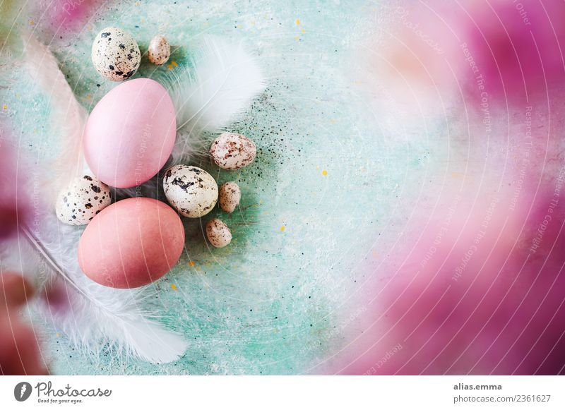 Kunterbunte Ostergrüße Ostern Osterei mehrfarbig rosa türkis Ei Farbe Unschärfe April Frühling frisch Textfreiraum Postkarte