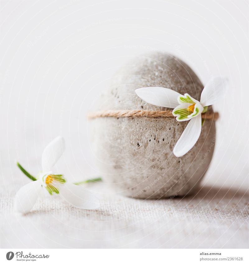 Osterei aus Beton mit kleinen Schneeglöckchen dekoriert Basteln Dekoration & Verzierung Feste & Feiern Ostern Frühling Blume schneeglöckchen grau weiß Glück