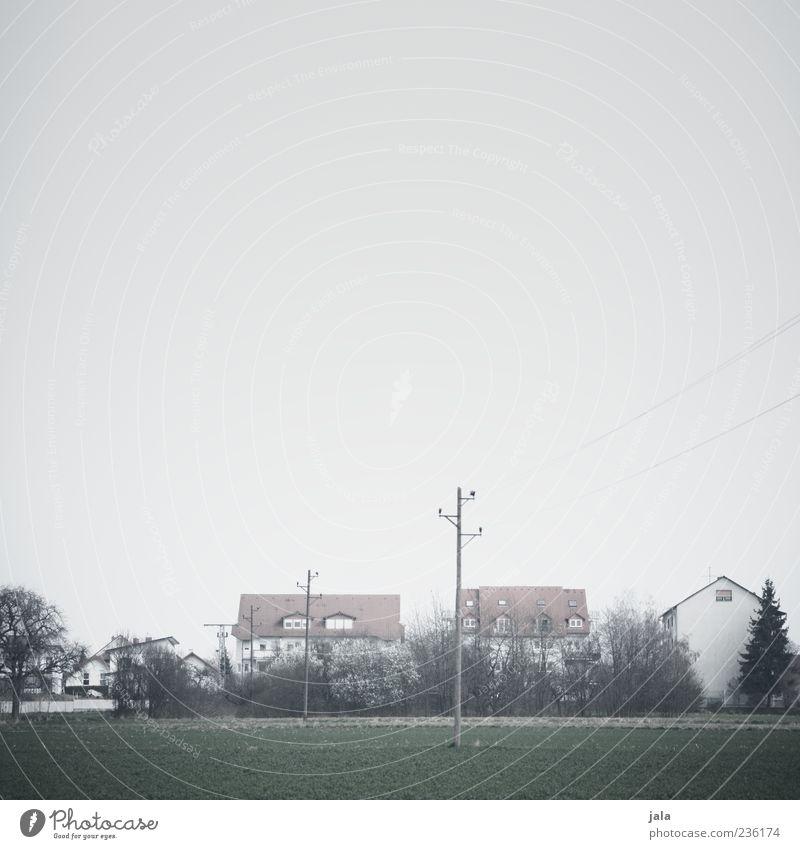 stadtrand Natur Landschaft Himmel schlechtes Wetter Nebel Pflanze Baum Sträucher Feld Stadtrand Haus Bauwerk Gebäude Architektur Strommast trist Farbfoto