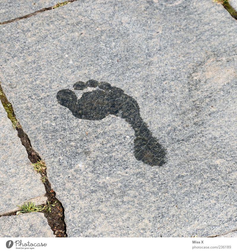 Barfuß Fuß nass Spuren Fußspur Abdruck Zehen Wasser Steinplatten Farbfoto Gedeckte Farben Außenaufnahme Menschenleer Textfreiraum links Textfreiraum rechts