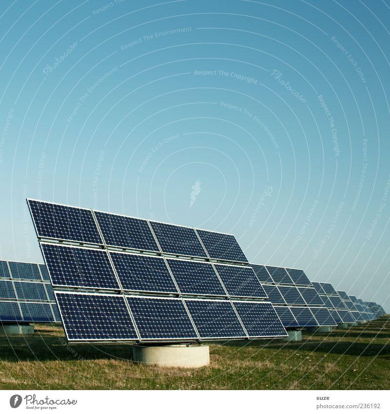 Solarworld Himmel blau Wiese Umwelt Energie Industrie Energiewirtschaft Zukunft Technik & Technologie Industriefotografie Klima Klarheit Wissenschaften Sonnenenergie Schönes Wetter Umweltschutz