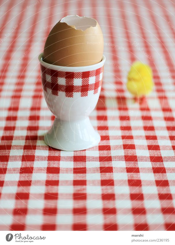 chicken run Lebensmittel Ernährung Frühstück Geschirr rot weiß Haushuhn Symbole & Metaphern kariert Eierbecher Eierschale frisch Küken Vogel Farbfoto