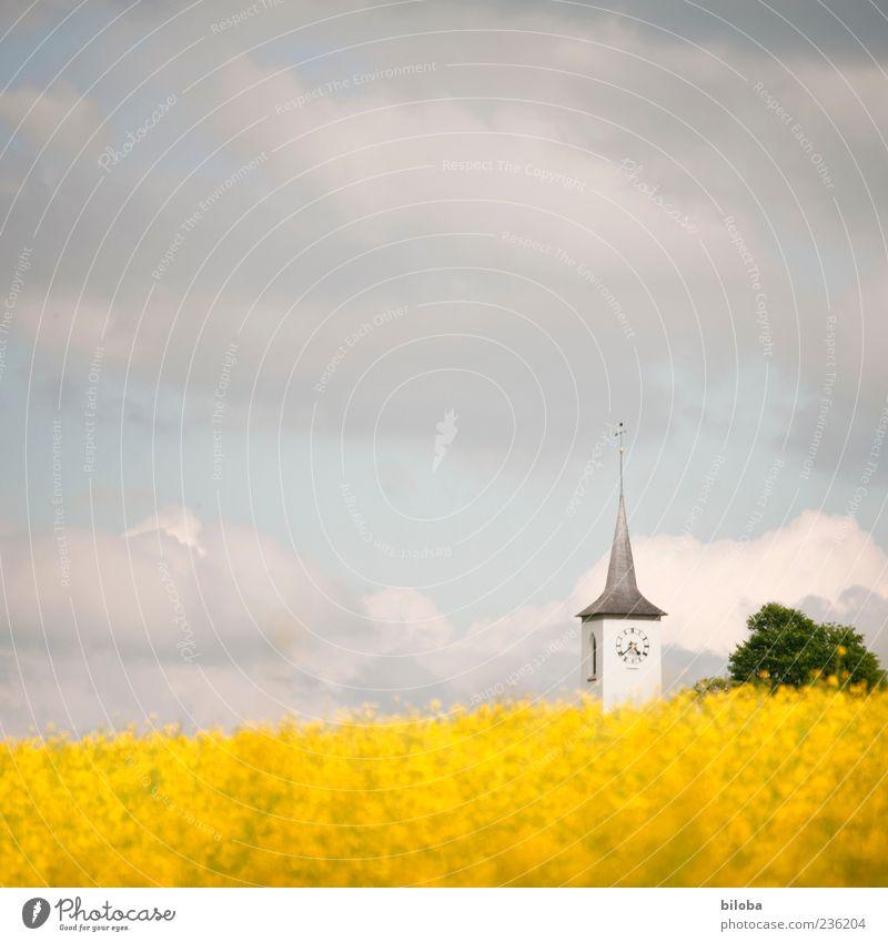 Landeskirche Himmel Wolken Sommer Nutzpflanze Hügel Kirche Bauwerk Gebäude Architektur gelb grau weiß ruhig Glaube Religion & Glaube Hoffnung Idylle Inspiration