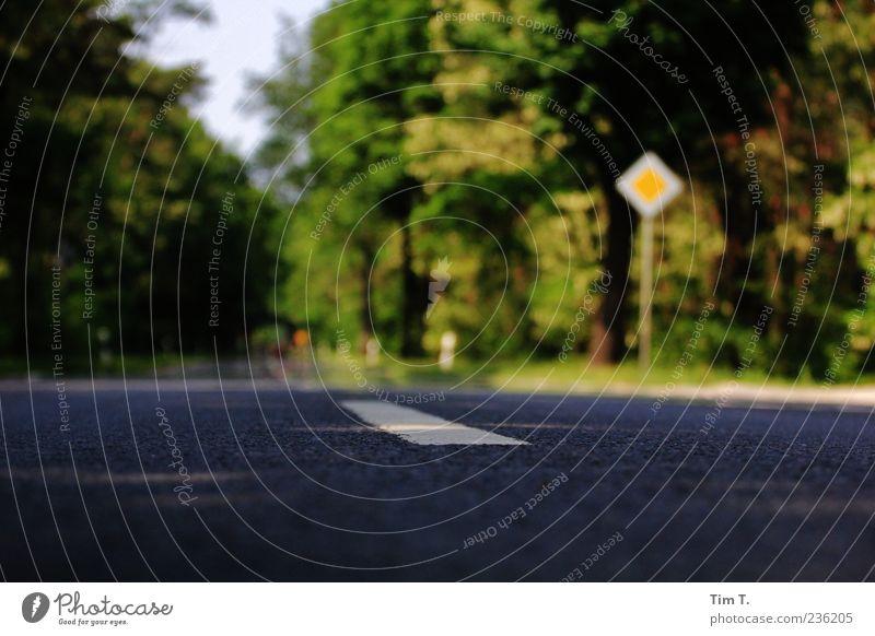 Landstraße Natur Menschenleer Verkehrswege Straßenverkehr Verkehrszeichen Verkehrsschild Ferien & Urlaub & Reisen Vorfahrt Allee Farbfoto Außenaufnahme Tag
