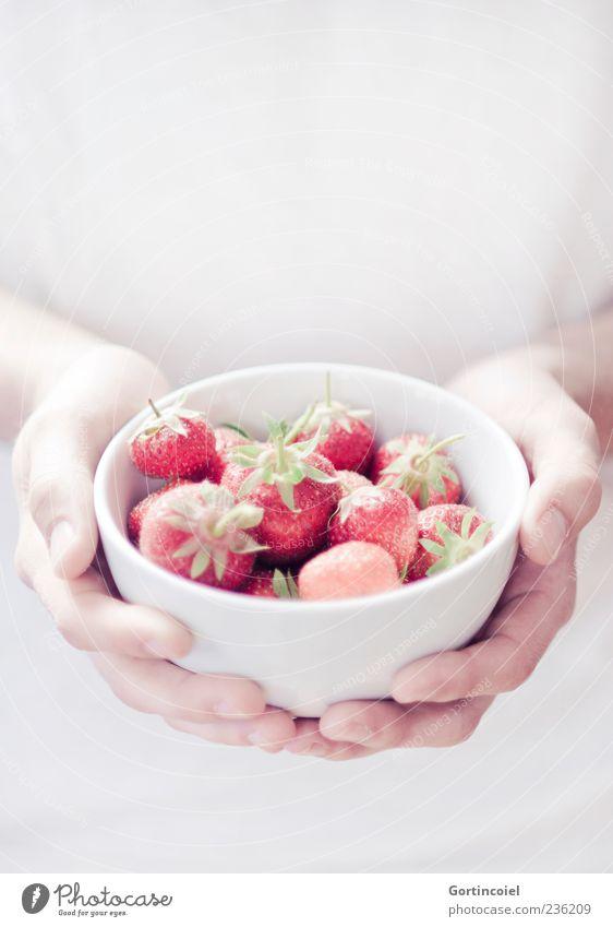 Fraises Lebensmittel Frucht Ernährung Bioprodukte Slowfood Schalen & Schüsseln Sommer rot weiß Erdbeeren festhalten Hand lecker süß Farbfoto Gedeckte Farben
