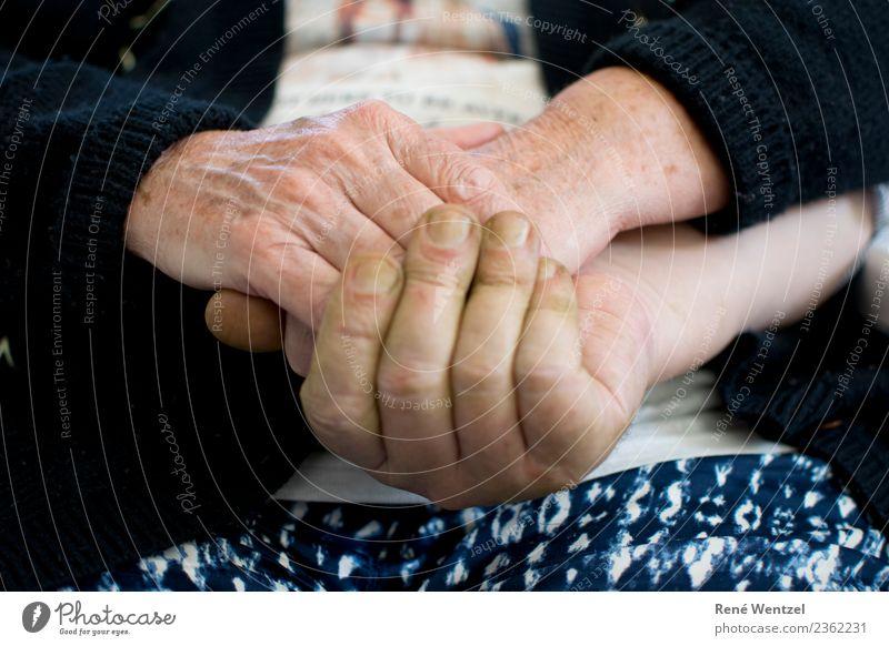 Vertraute Hände Frau Mensch Mann Hand Erwachsene Leben Liebe Senior natürlich Gefühle feminin Glück Zusammensein Zufriedenheit maskulin 60 und älter