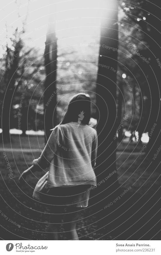 das herz ein stück größer. feminin Junge Frau Jugendliche 1 Mensch 18-30 Jahre Erwachsene Baum Wald Kleid Strickjacke träumen außergewöhnlich dunkel Sehnsucht