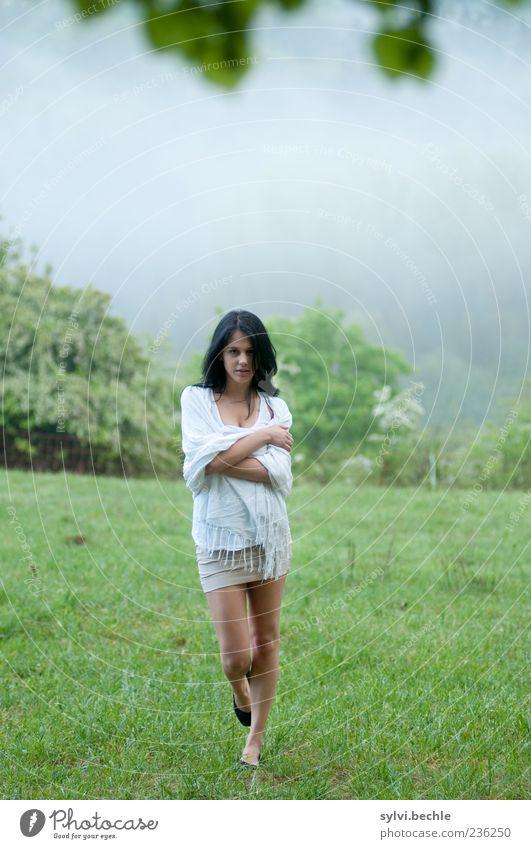 Morgennebel IV Mensch Natur Jugendliche schön Baum Blatt Wiese feminin Gras Frühling Stimmung gehen Nebel elegant laufen Junge Frau