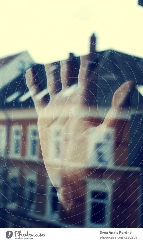 Abende Mit Langen Schatten. Hand Haus Fenster Gefühle Glas maskulin Finger festhalten berühren Sehnsucht Fensterscheibe Glasscheibe Heimweh Männerhand
