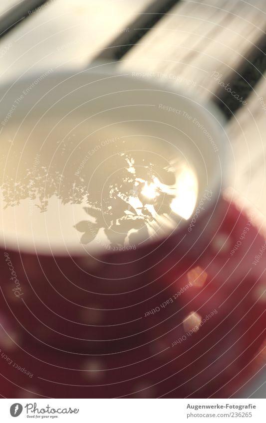Spiegelung im Tee weiß rot Blatt Getränk Geschirr Tasse Kaffeetasse Kaffeepause Lichterscheinung Ernährung Reflexion & Spiegelung Heißgetränk Teetasse
