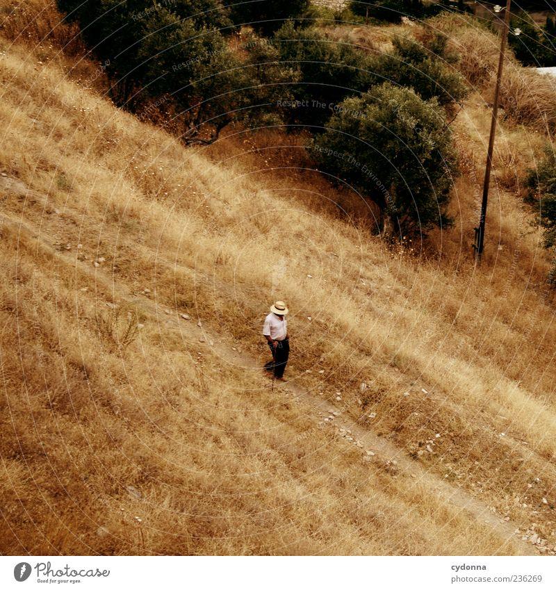 Long Way Home Wohlgefühl Zufriedenheit Erholung ruhig Ferien & Urlaub & Reisen Ausflug Mensch Männlicher Senior Mann 60 und älter Natur Sommer Wiese Bewegung