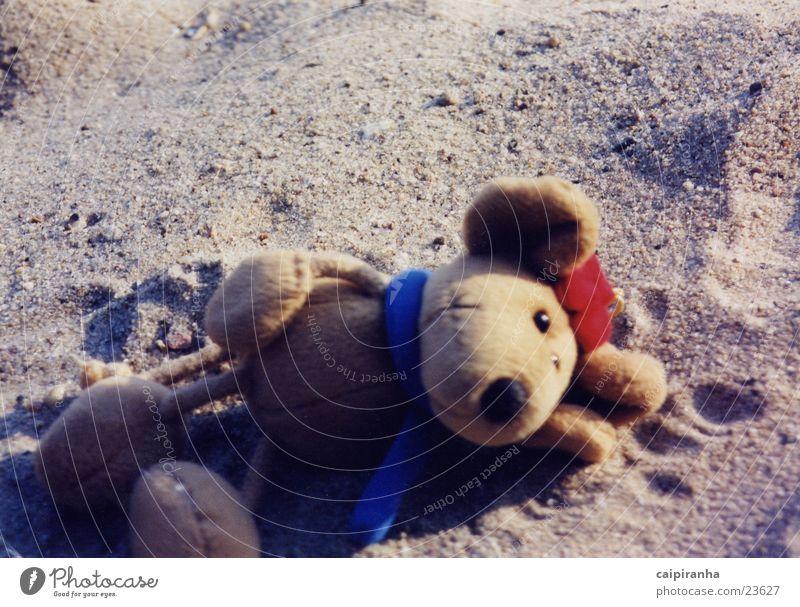 nickerchen Stofftiere Strand schlafen Erholung niedlich Maus