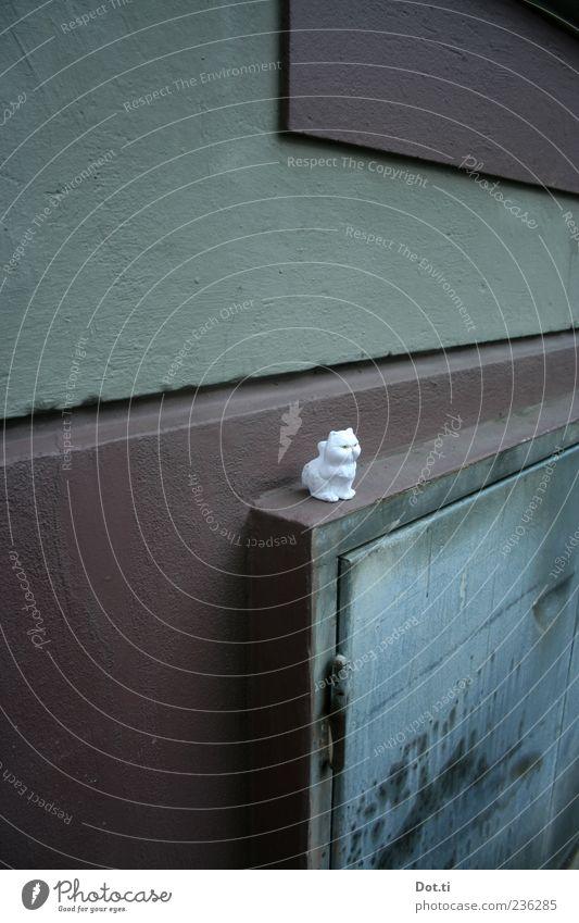 Lausekätzchen Mauer Wand Tier Katze 1 Spielzeug weiß Tierfigur Sims vergessen verloren Fundstück einzeln Farbfoto Gedeckte Farben Außenaufnahme Menschenleer