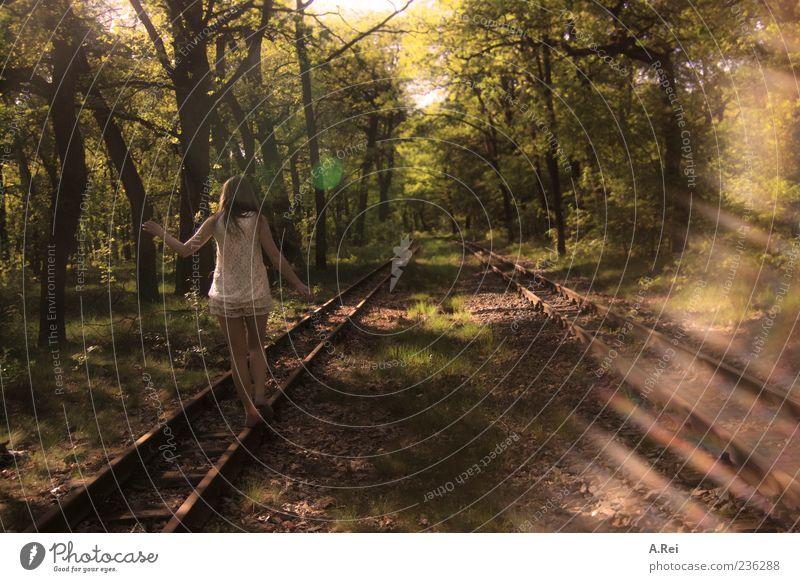 Waldspaziergang Mensch feminin Junge Frau Jugendliche 1 18-30 Jahre Erwachsene Natur Sommer Kleid brünett langhaarig Spaziergang Farbfoto Außenaufnahme