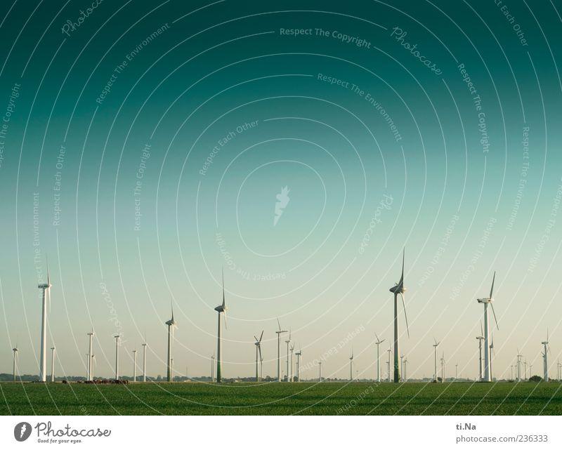 Dithmarschen, the last adventure Himmel blau grün Landschaft Wiese Frühling Wind Feld Klima groß Schönes Wetter Erneuerbare Energie Windkraftanlage drehen