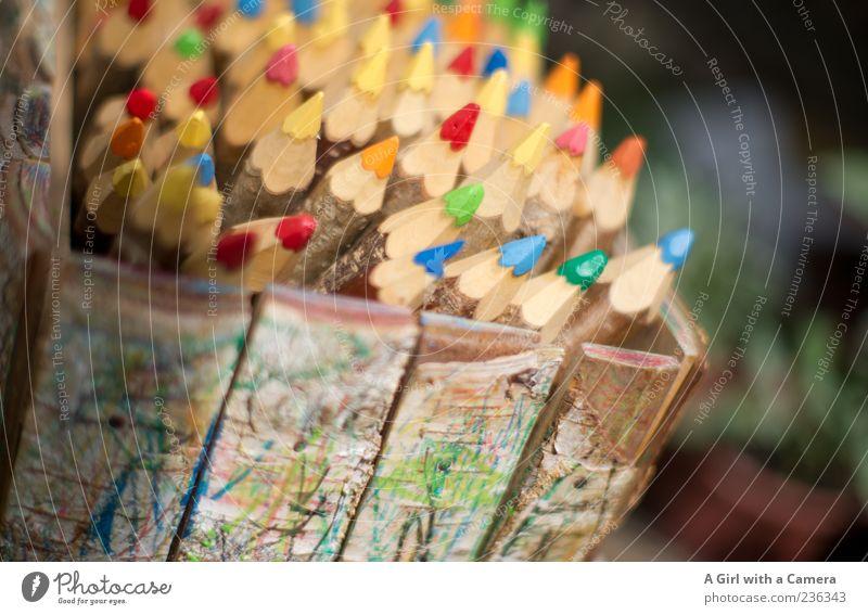 a box of delights Freizeit & Hobby Kunst Schreibstift Holz außergewöhnlich einfach natürlich blau mehrfarbig gelb grün rot Farbstift dick Kiste Farbfoto