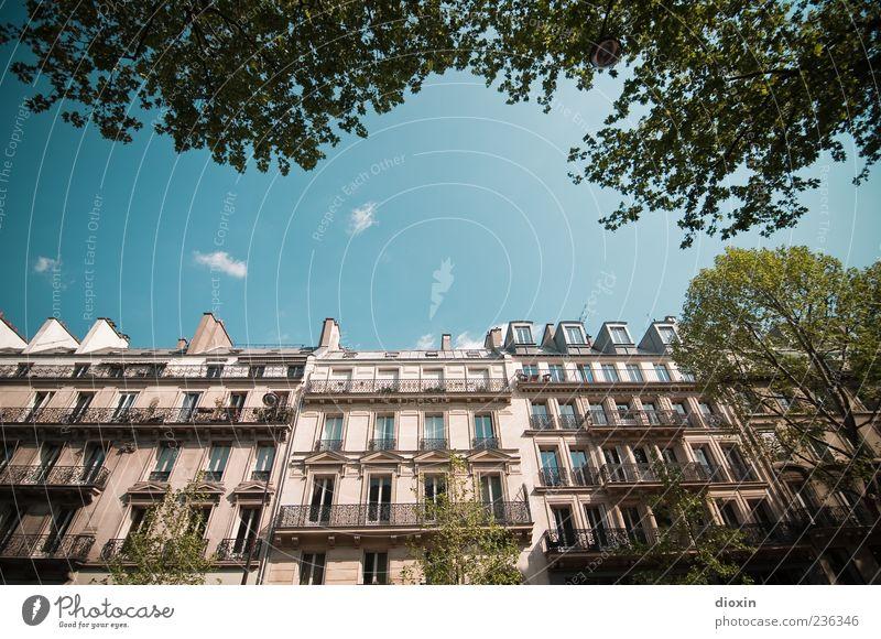 Boulevard Saint-Michel Himmel alt Stadt Baum Blatt Wolken Haus Fenster Architektur Gebäude Fassade hoch authentisch Europa Dach Schönes Wetter
