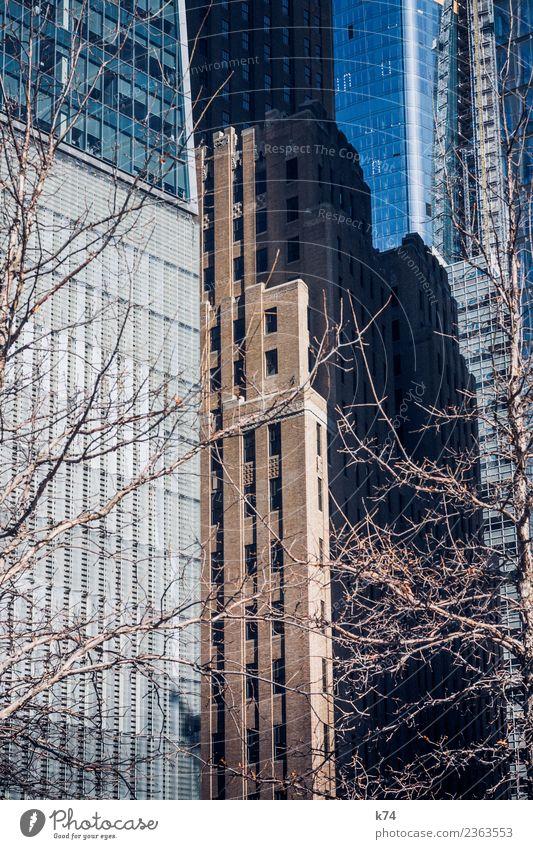 NYC - Manhattan Winter Baum New York City USA Amerika Hauptstadt Stadtzentrum Menschenleer Hochhaus Fassade Fenster Stein Beton Glas Stahl gigantisch groß hoch