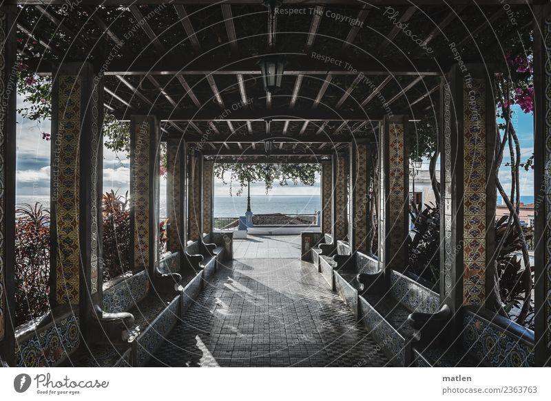 Laubengang Himmel Horizont Frühling Schönes Wetter Pflanze Park Meer Stadt Menschenleer Terrasse blau gelb grau Schatten Kolonaden Bank Platz Licht Mosaik