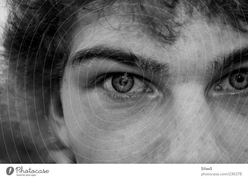 Flausenkopf ohne Mund Mensch maskulin Auge 1 Haare & Frisuren grau schwarz weiß Augenbraue Männerauge direkt Anschnitt Junger Mann Gesichtsausschnitt