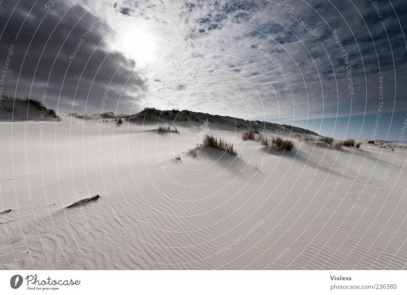 Spiekeroog | ...Flood Light Natur Himmel Sonne Sommer Strand Ferien & Urlaub & Reisen ruhig Wolken Erholung Landschaft Insel Stranddüne Sommerurlaub gigantisch