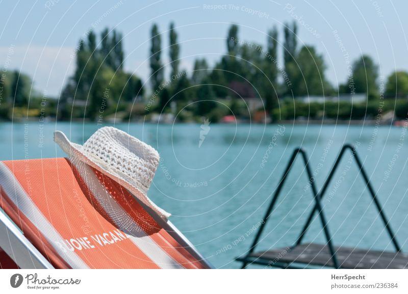 Buone Vacanze Natur Wasser Baum grün blau Sommer Strand Ferien & Urlaub & Reisen Erholung träumen See Landschaft Zufriedenheit Stimmung Tourismus