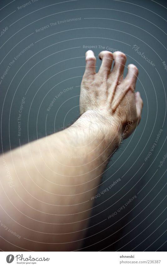 Der Speck sitzt woanders Hand Haare & Frisuren Arme Haut Finger dünn greifen Nervosität Gelenk Anspannung Sehne Mensch