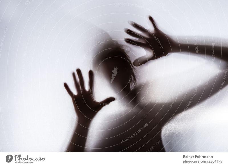 """der Schatten einer panischen Frau Mensch feminin 1 kämpfen bedrohlich Angst Entsetzen Todesangst gefährlich Stress Verzweiflung Aggression Gewalt """"Schatten"""