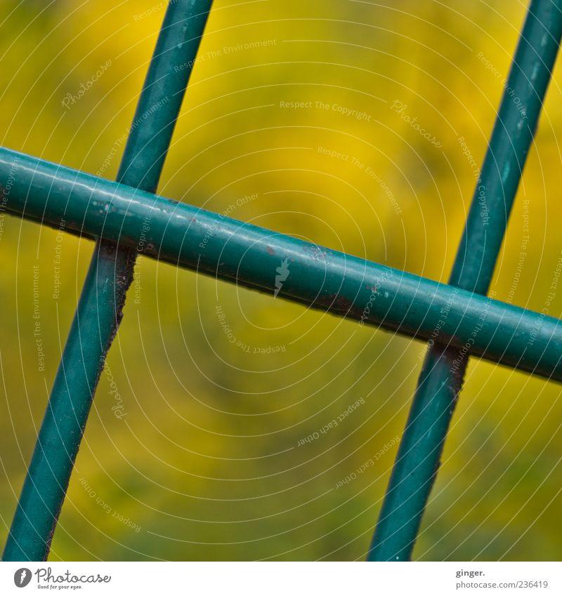 kreuz und quer, diagonal grün gelb Metall geschlossen Zaun unten Kreuz Barriere Gitter Stab gekreuzt lackiert aufeinander abstrakt
