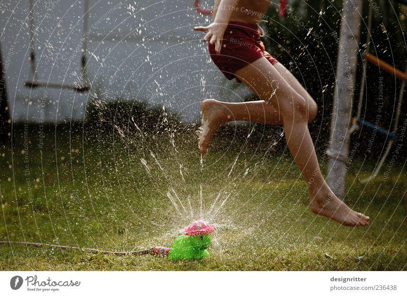 Wuaaahh! Spielen Garten Kind Junge Kindheit Beine Fuß 8-13 Jahre Wasser Wassertropfen Sommer Schönes Wetter Gras springen toben wild Freude Fröhlichkeit