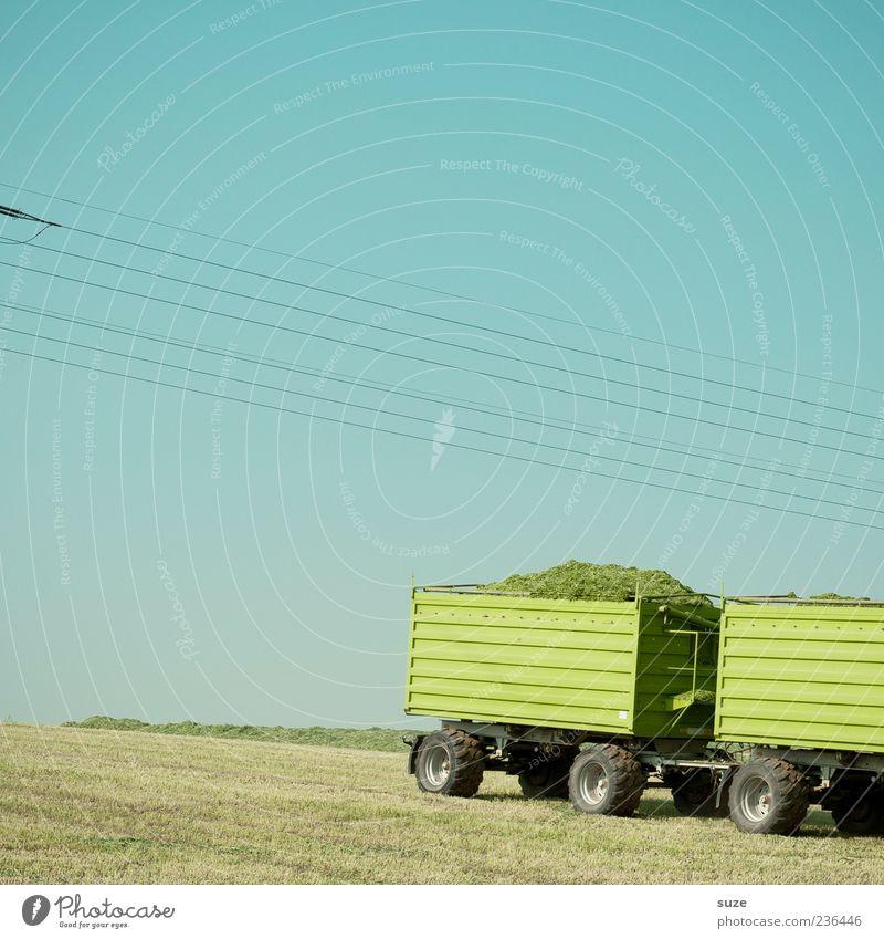 Gründonnerstag Sommer Landwirtschaft Forstwirtschaft Umwelt Natur Himmel Wolkenloser Himmel Schönes Wetter Gras Wiese Feld Fahrzeug Anhänger authentisch einfach