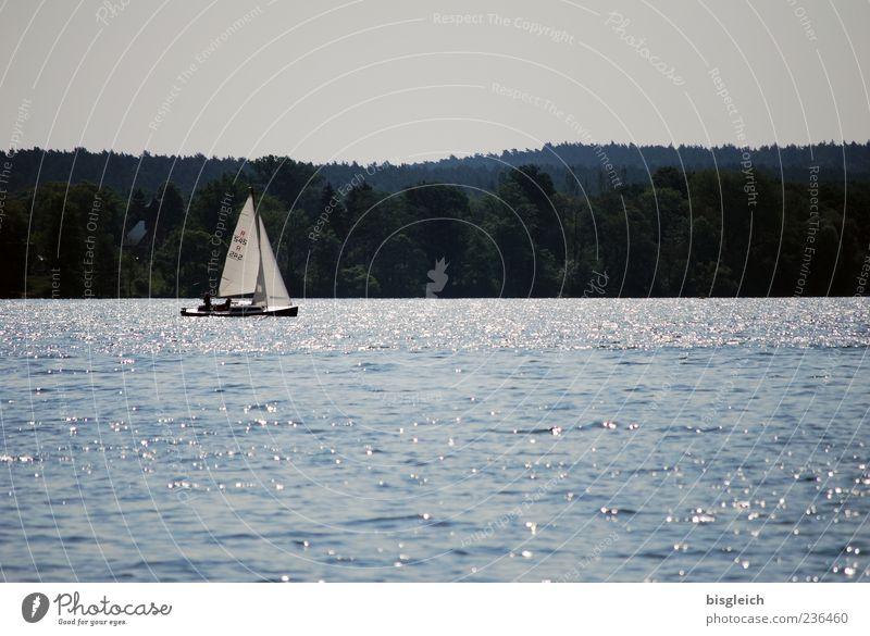 Scharmützelseesegler I Segeln Segelboot Wassersport Wellen See blau ruhig Farbfoto Gedeckte Farben Außenaufnahme Menschenleer Textfreiraum oben